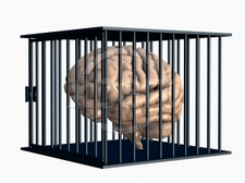 otak berbahaya_resize